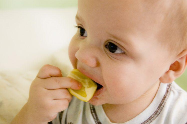 בייבי מאסטר שף | צילום אתר Fliker